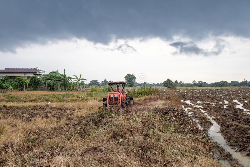 Rice farm during harvesting in Thailand. Rice farm during harvest by combining truck in rurul contryside of Thailand stock photography