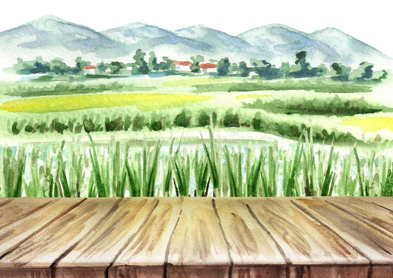 Rice field and empty table background. Watercolor hand drawn illustration. stock illustration