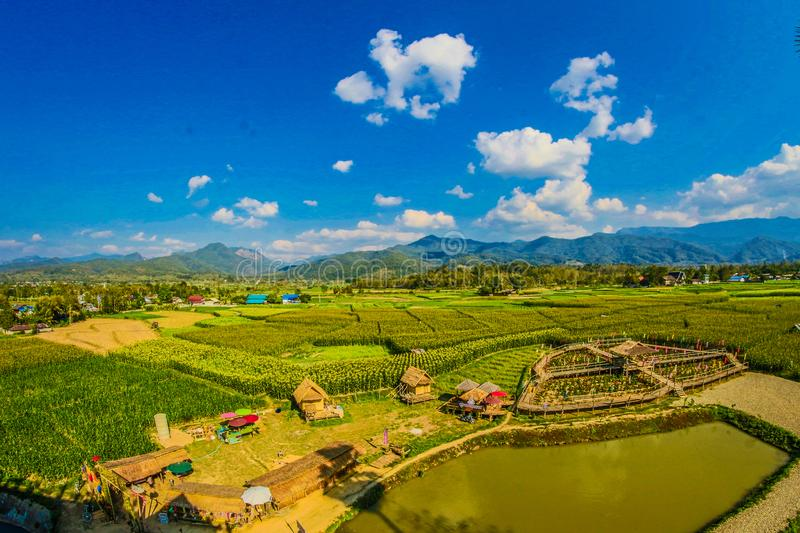 Rice Field With Mountain and Houses during Cloudy Day royalty free stock photos