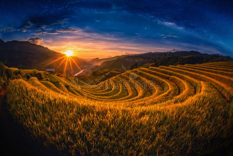 Rice fields on terraced with milky way at sunset in Mu Cang Chai, YenBai, Vietnam. stock images