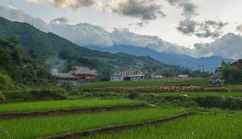 Rice fields on terraced in rainny season at SAPA, Lao Cai, Vietnam. Rice fields prepare for transplant at Northwest Vietnam stock photos