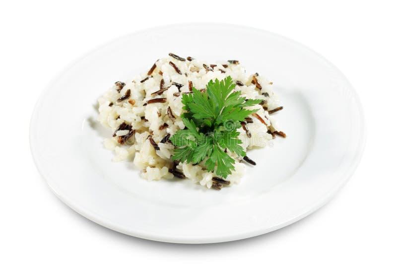 Download Rice Garnish stock image. Image of plate, parsley, roast - 6478189