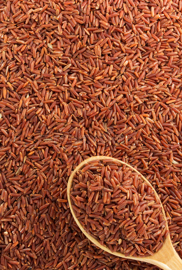 Rice grain as background royalty free stock photo
