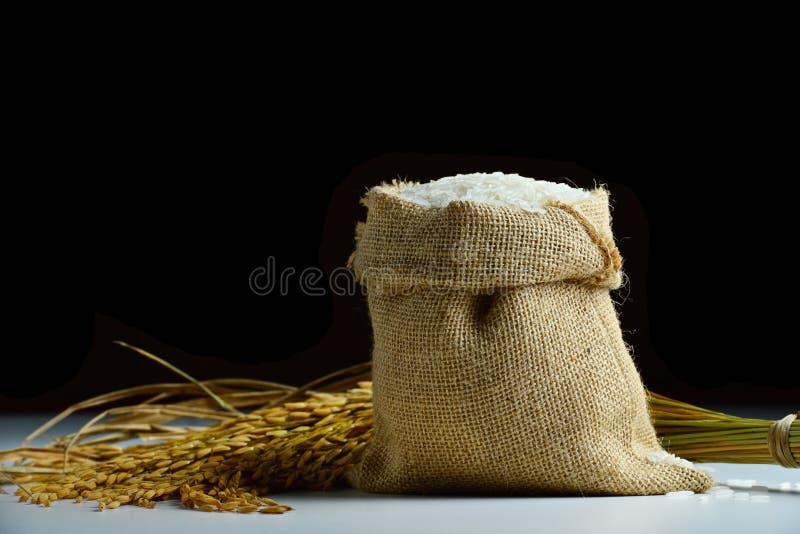Rice i burlapsäck arkivfoton