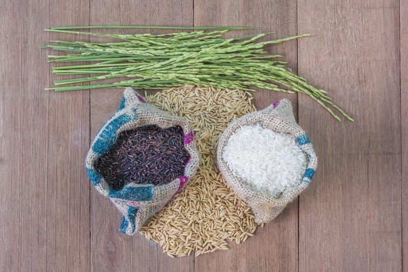 rice kärnar ur arkivfoton