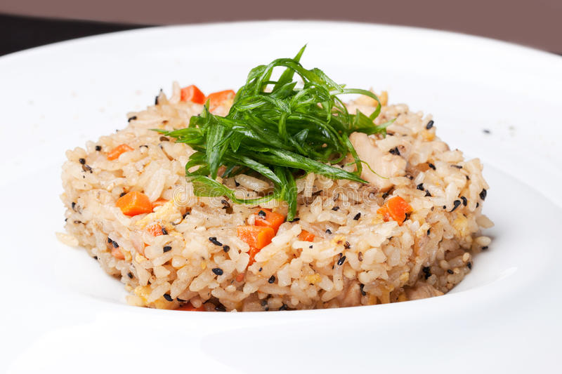 Rice med salladslökar fotografering för bildbyråer