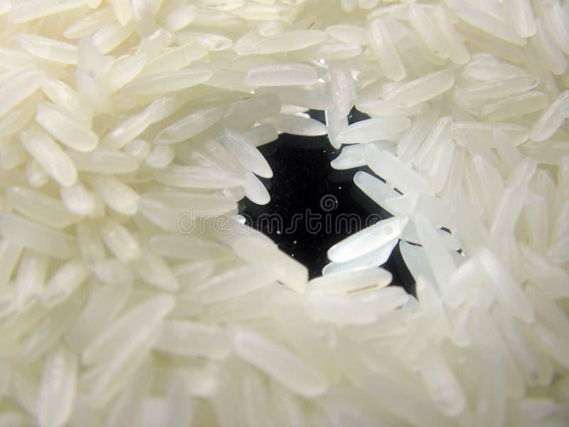 Rice Na Lustrze Zdjęcia Stock