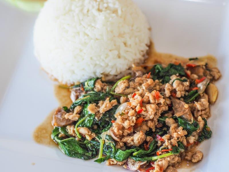 Rice nakrywał z smażącą wieprzowiną basilem i, selekcyjna ostrość obraz stock