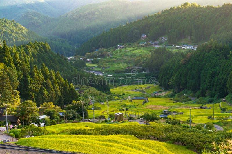 Rice paddy terraces on sunset. Yotsuya, Aichi prefecture, Japan royalty free stock photos