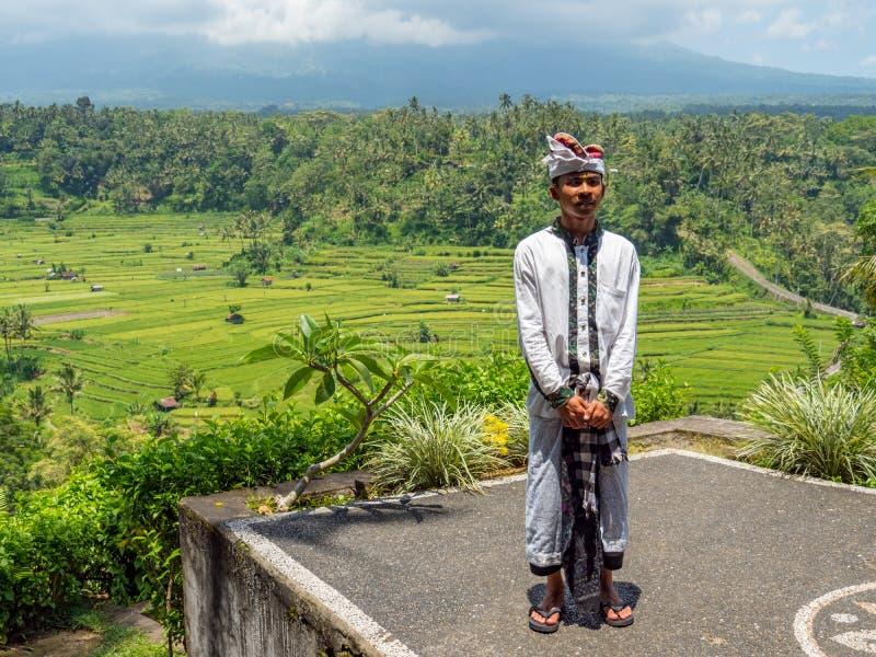Rice pola w Bali Indonezja z miejscowym zdjęcie royalty free