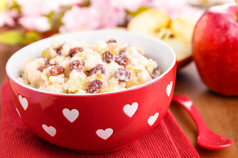 Rice pudding. Creamy rice pudding with cinnamon, apple pieces and raisins stock photography