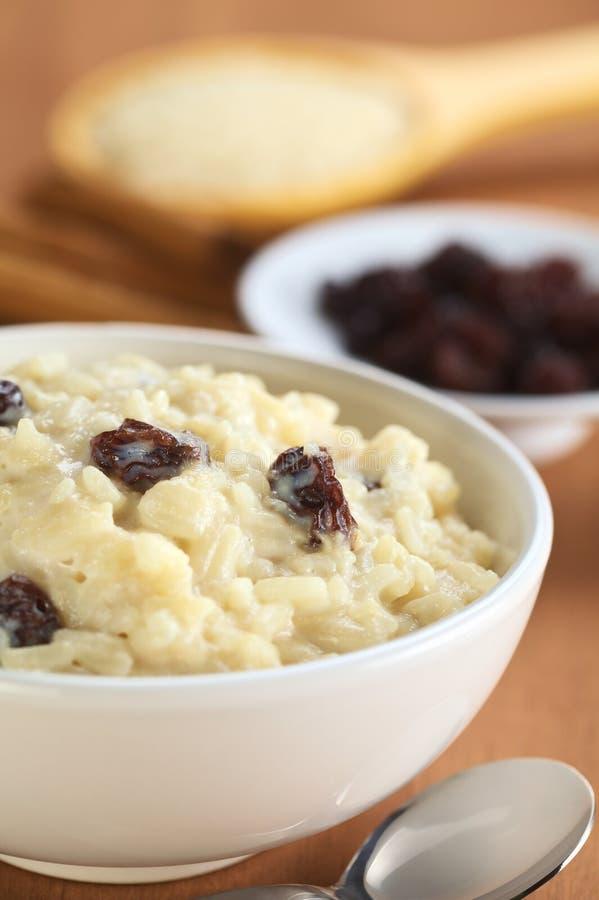 Rice Pudding with Raisins royalty free stock photos