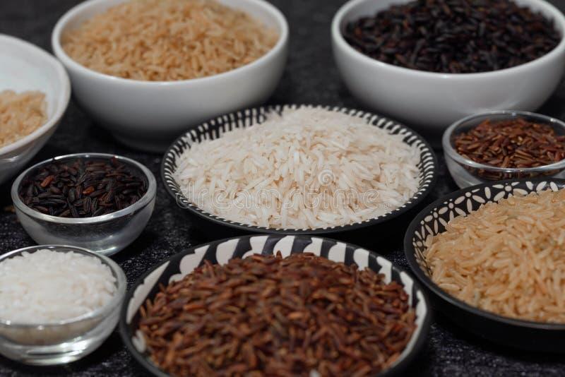 Rice, różne rozmaitość surowi ryż fotografia stock