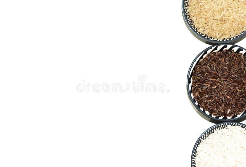 Rice, różne rozmaitość surowi ryż, przestrzeń dla teksta/ fotografia royalty free