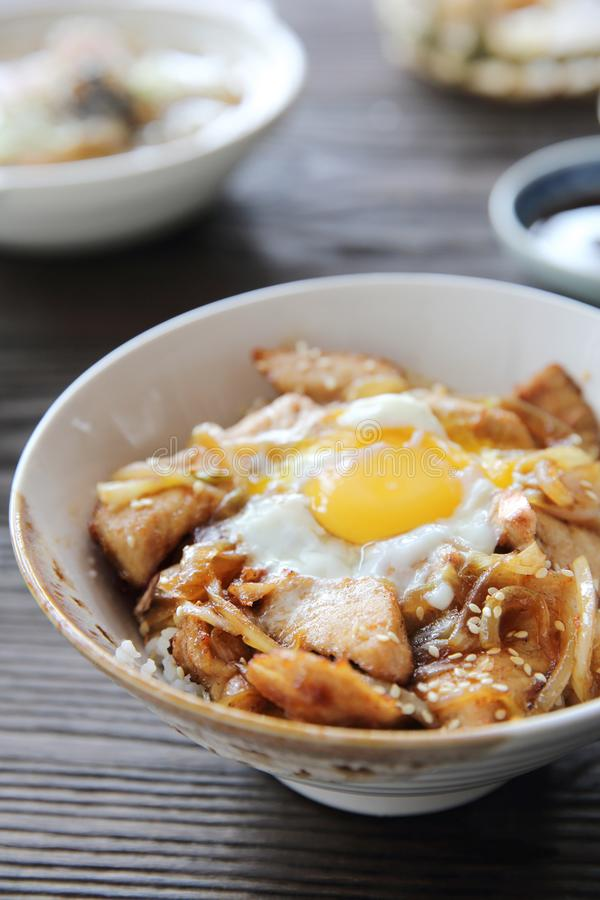 Rice with slice pork and egg butadon, japanese food royalty free stock photography