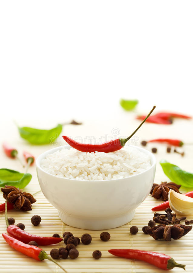 Rice and spices stock photography