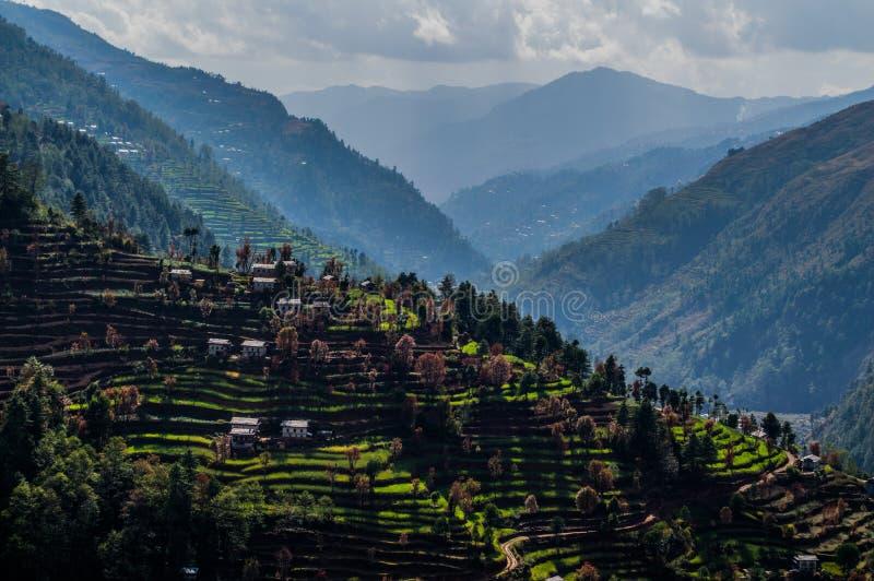 Rice tarasy Wzdłuż Everest Podstawowego obozu wędrówki w Nepalskich himalajach zdjęcia royalty free