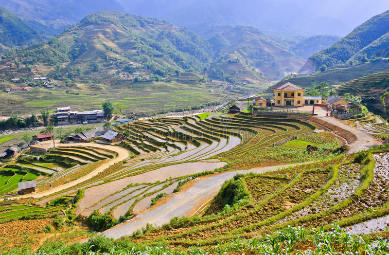 Download Rice terraced fields stock photo. Image of pattern, outdoor - 25718662