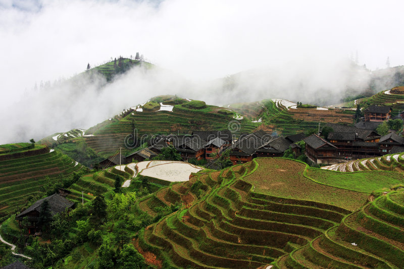Rice terraces. This Zhuang ethnic minority village is located high in the Longji mountains. These rice terraces were constructed by the Zhuang minority people to stock photos