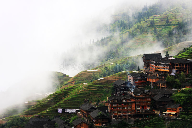 Rice terraces. This Zhuang ethnic minority village is located high in the Longji mountains. These rice terraces were constructed by the Zhuang minority people to stock images