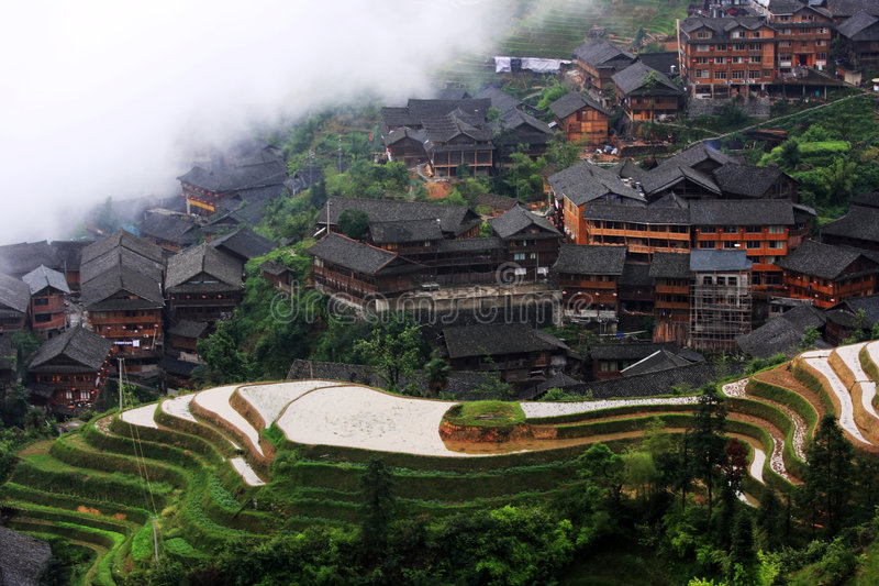 Rice terraces. This Zhuang ethnic minority village is located high in the Longji mountains. These rice terraces were constructed by the Zhuang minority people to royalty free stock photos