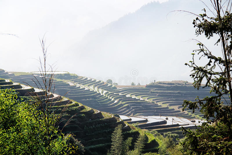 Rice Terraces in Ping An Guilin China stock photography