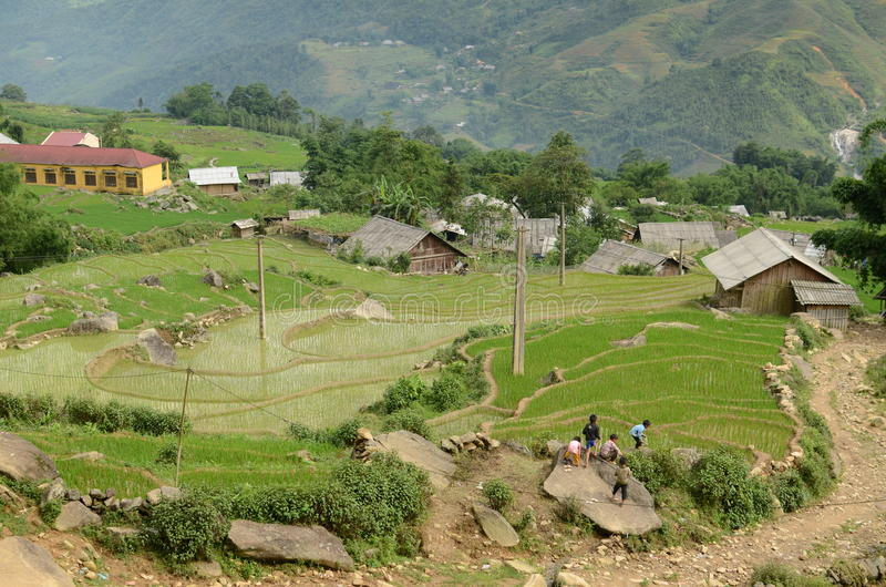 Rice terraces in rural North Vietnam. Green mountains near Sapa, Vietnam stock images