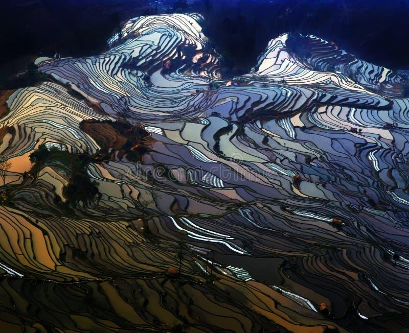 Rice terraces of yuanyang stock image