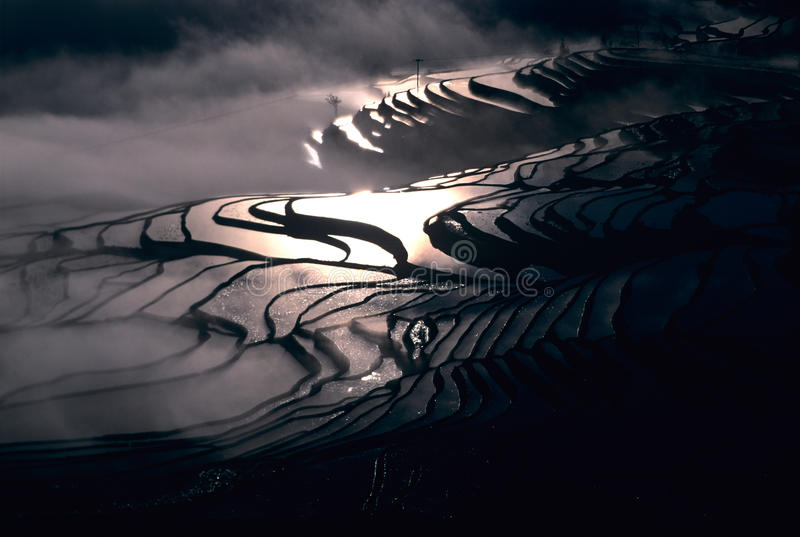Rice terraces of yuanyang in the morning stock photography