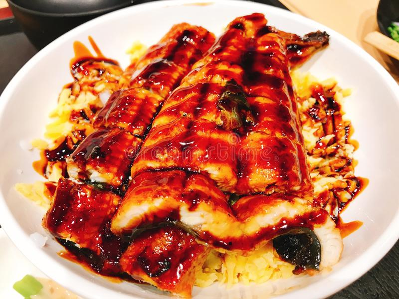 Rice topped with fillets of eel grilled in sweet soy sauce. stock photography