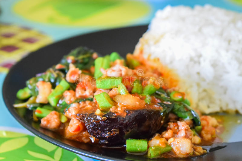 Rice topped with stir-fried pork, Century egg and basil. Season with seasoning oil sauce fish sauce sugar basil leaves,Scoop on rice, Eat with eggs And chili royalty free stock photo
