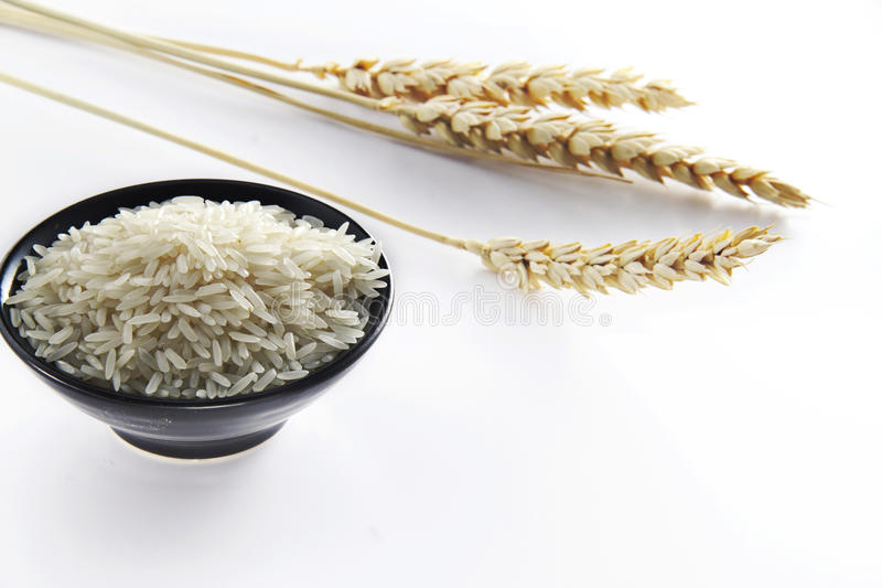 Rice with wheat. A cup of rice with the wheat as background stock images