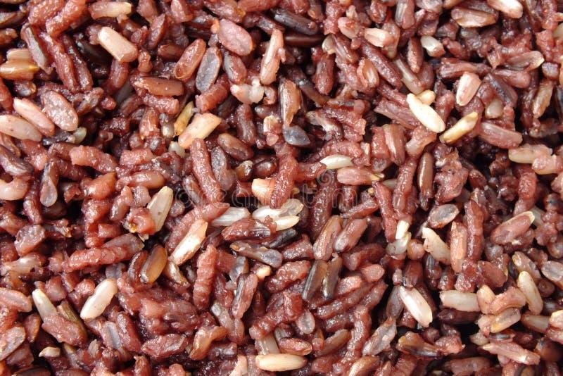 Riceberry烹饪器材 免版税库存照片