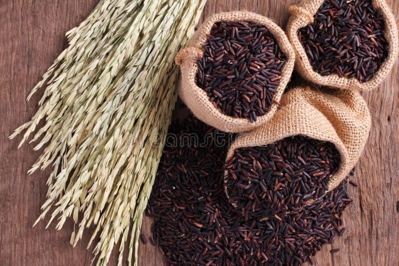 Riceberry Rice obraz royalty free