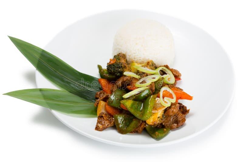 Ricecurry kruidige schotel met geroosterde vlees en groenten stock fotografie