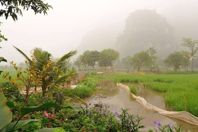 Ricefields y las montañas de la piedra caliza en la madrugada imagen de archivo