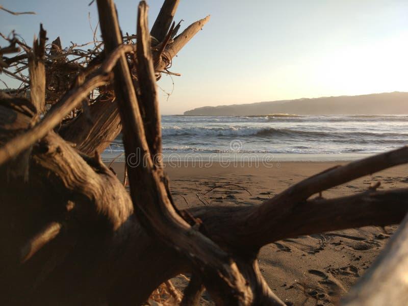 Ricerca del tramonto fotografie stock