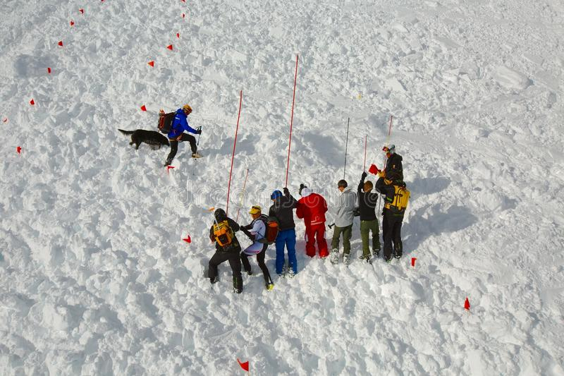 Ricerca di Avalanch immagine stock