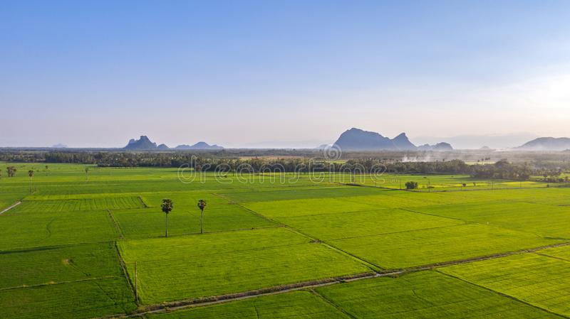 Rices paddy field. Image of beautiful Terraced rice field in water season and Irrigation from drone,Top view of rices paddy field, thailand. High angle image stock image