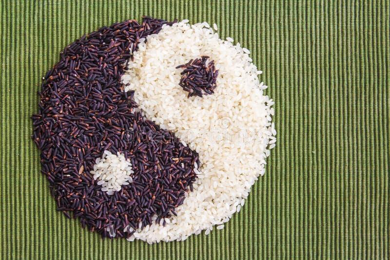 riceyang yin fotografering för bildbyråer