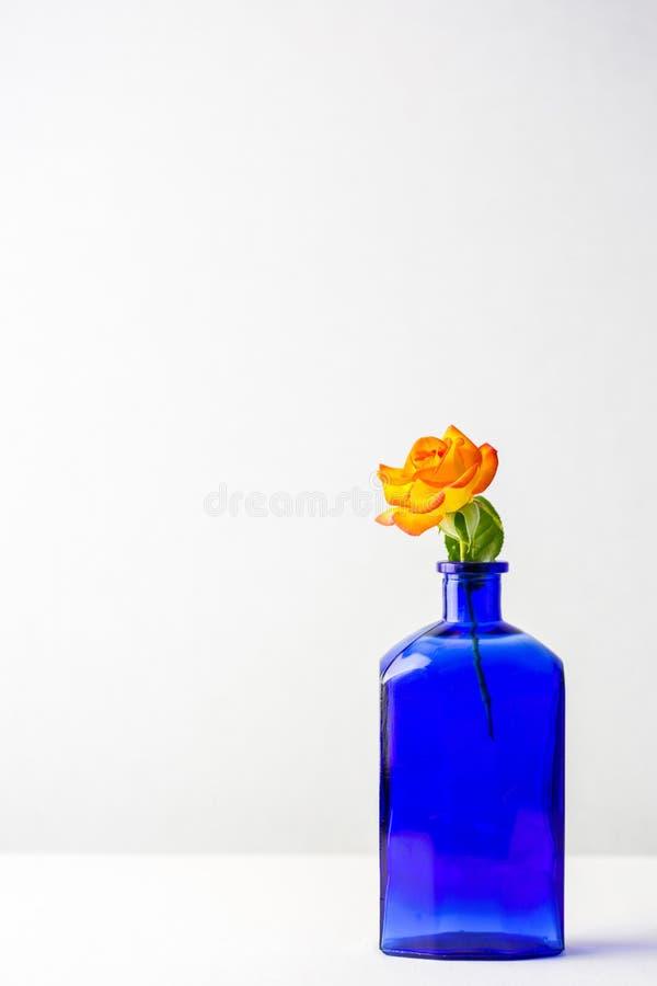 Rich Blue Vase med apelsinen och den gula rosen arkivbilder