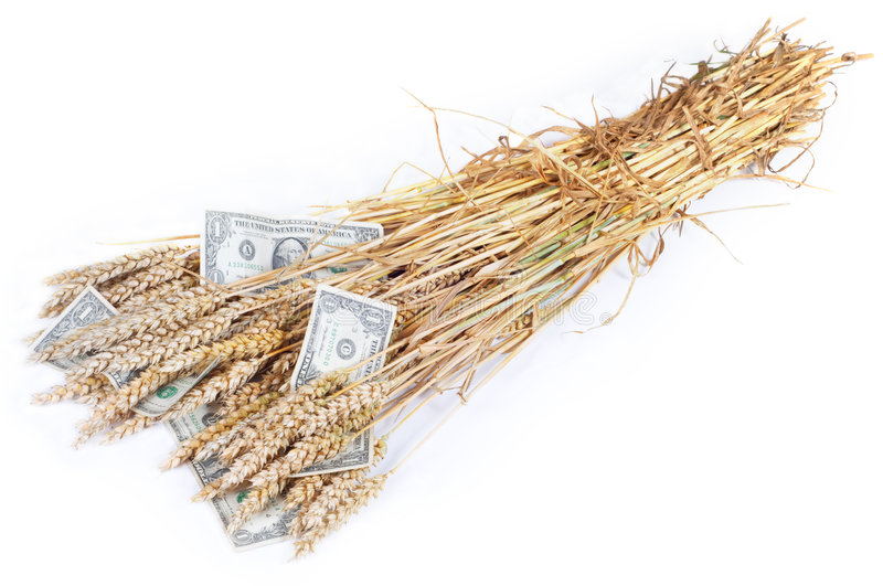 Rich Crop Royalty Free Stock Photo