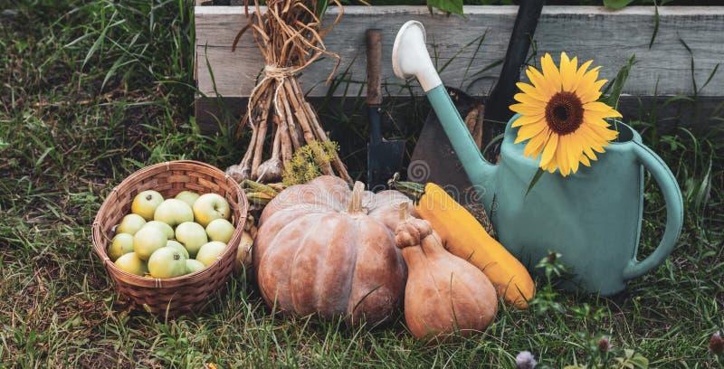 Rich Harvest im Garten der Untiefen und der Garten-Werkzeuge K?rbis, ?pfel, Zwiebeln, Knoblauch, Karotten, Gurken stockfotografie