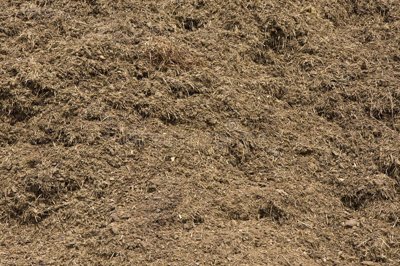 Rich, organic compost royalty free stock photo
