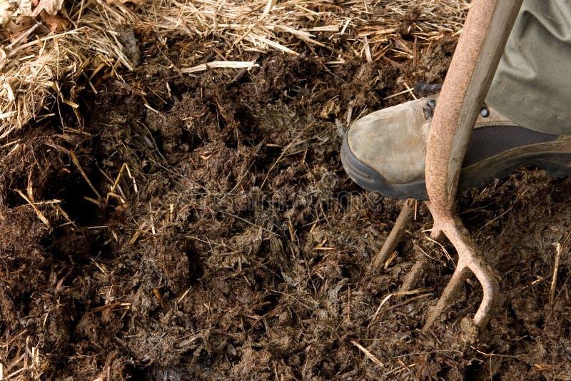 Rich organic mulch royalty free stock photo