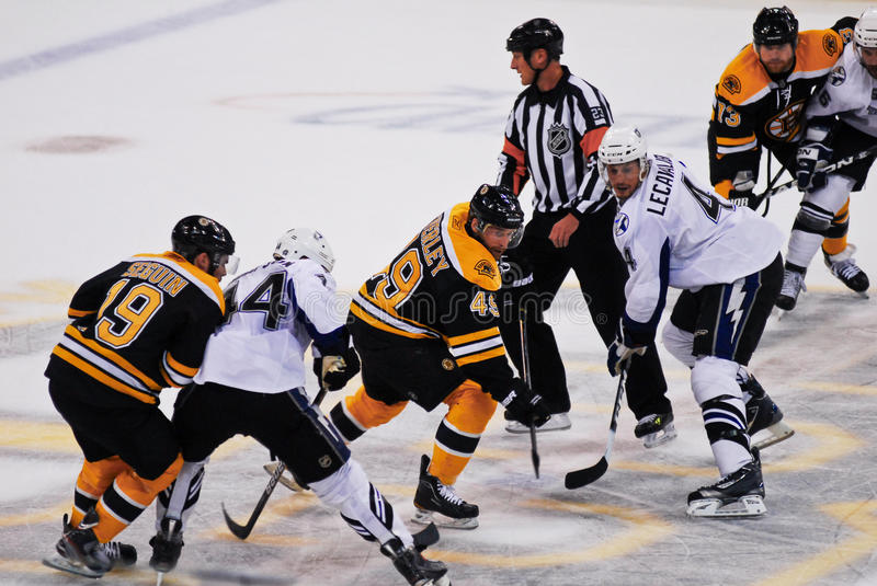 Download Rich Peverley Boston Bruins Editorial Photography - Image: 24286517