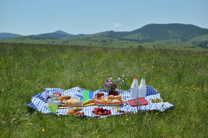 Rich Picnic Food royalty free stock photos