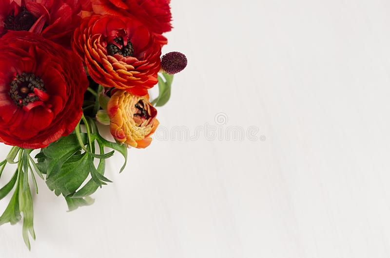 Rich red buttercup flowers with green leaves top view on soft white wooden table. Elegance spring bouquet. royalty free stock photo