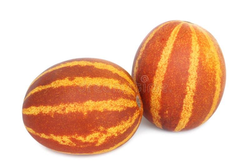 Rich Sweetness Mini Melon fotos de stock