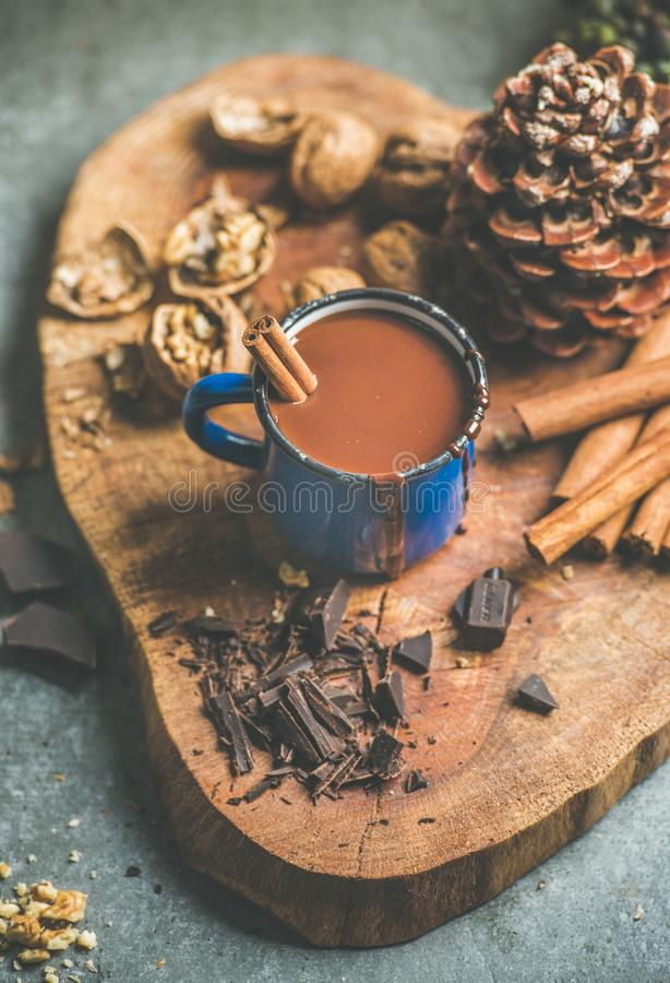 Rich winter hot chocolate with cinnamon and walnuts royalty free stock photo